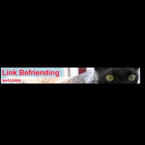 Link Befriending